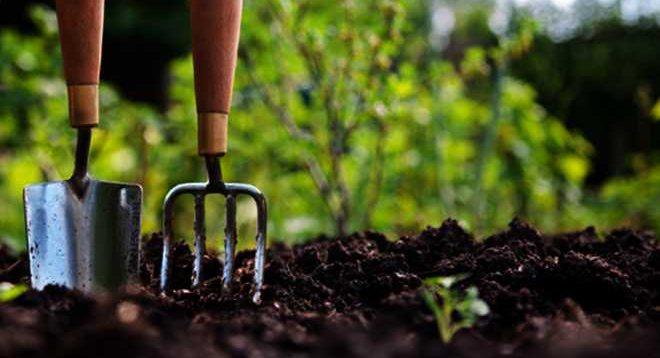 wallmarker gardening service